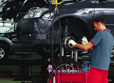 Trained Toyota Technicians